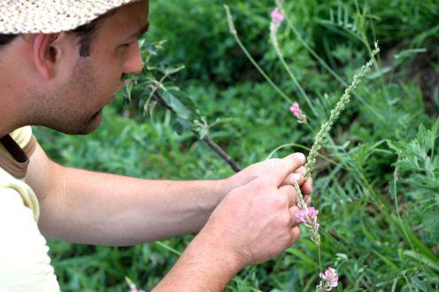 Biodiversität6
